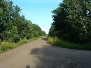 Photo  from end of driveway - Twp Rd 515A, from my sign to Rge Rd 205.